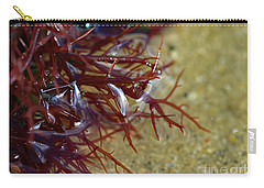 Tidepool Seaweed Carry-all Pouch