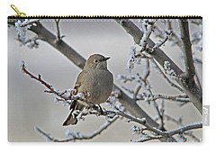 Townsend's Solitaire Carry-all Pouch
