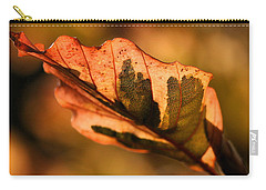 Tri-color Beech In Autumn Carry-all Pouch by Angela Rath