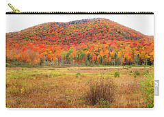 Vermont Foliage 1 Carry-all Pouch