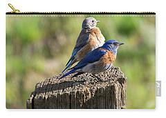 Western Bluebird Pair Carry-all Pouch