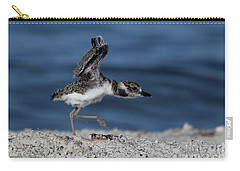 Wilson's Plover Carry-all Pouch by Meg Rousher