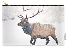 Carry-all Pouch featuring the photograph Winter Bull by Mike Dawson