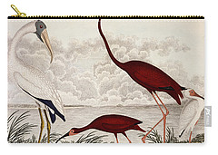 Wood Ibis, Scarlet Flamingo, White Ibis Carry-all Pouch