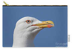 Yellow-legged Gull - Larus Michahellis Carry-all Pouch by Jivko Nakev