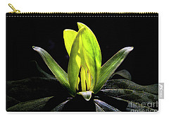 Yellow Trillium Carry-all Pouch by Barbara Bowen