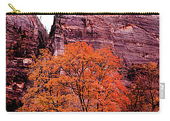 Carry-all Pouch featuring the photograph Zion National Park by Norman Hall