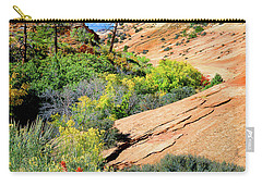 Zion Slickrock Carry-all Pouch