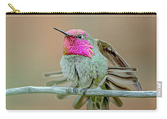 Anna's Hummingbird Carry-all Pouch by Tam Ryan