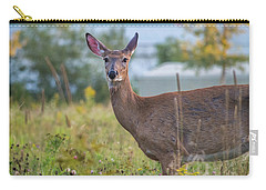 Down East Maine  Carry-all Pouch by Trace Kittrell