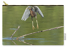 Carry-all Pouch featuring the photograph Green Heron by Tam Ryan