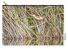 Carry-all Pouch featuring the photograph Least Bittern by Tam Ryan