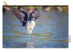 Black-necked Stilt  Carry-all Pouch by Tam Ryan