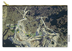 Carry-all Pouch featuring the photograph 1m5412 Mt. Washington Over Lava Fields Wa by Ed Cooper Photography