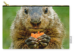 A Hungry Fellow  Carry-all Pouch