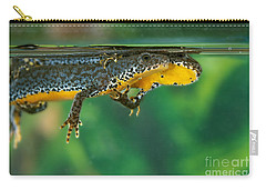 Alpine Newt Triturus Alpestris Carry-all Pouch