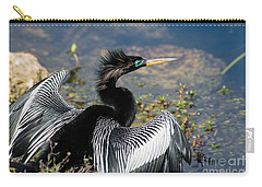 Anhiinga Carry-all Pouch by Carol Ailles