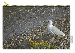 Animals A22 Carry-all Pouch
