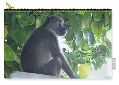 Baboon Sits Guard  Carry-all Pouch