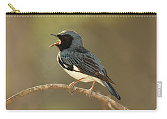 Black-throated Blue Warbler Carry-all Pouch by Alan Lenk