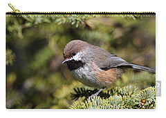 Boreal Chickadee Carry-all Pouch