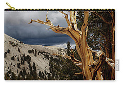 Bristlecone Pine 4 Carry-all Pouch
