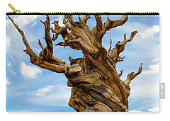 Bristlecone Pine Tree 3 Carry-all Pouch