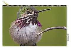 Calliope Hummingbird Carry-all Pouch