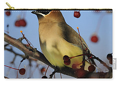 Cedar Waxwing... Carry-all Pouch