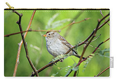 Carry-all Pouch featuring the photograph Chipping Sparrow by Tam Ryan