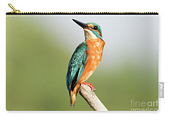 Common Kingfisher Alcedo Atthis Carry-all Pouch