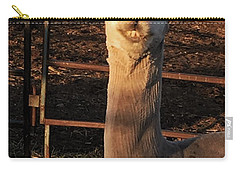 Cria Carry-all Pouch