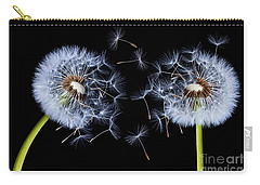 Carry-all Pouch featuring the photograph Dandelion On Black Background by Bess Hamiti