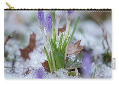 Early Spring Crocus Carry-all Pouch