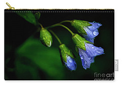 Carry-all Pouch featuring the photograph Jacobs Ladder by Thomas R Fletcher
