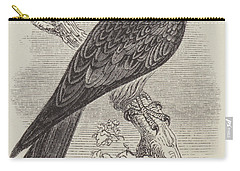 Kite Carry-all Pouch by English School