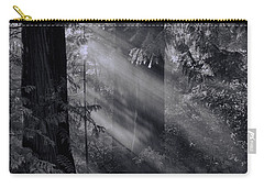 Let There Be Light Carry-all Pouch by Don Schwartz