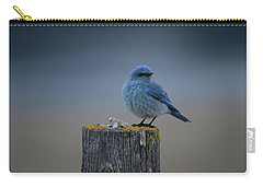 Mountain Bluebird 2 Carry-all Pouch
