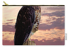 Peregrine Falcon Carry-all Pouch by Lynn Bolt
