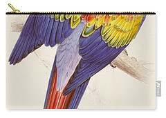 Red And Yellow Macaw Carry-all Pouch by Edward Lear