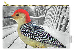 Red Bellied Woodpecker In Winter Carry-all Pouch by Janette Boyd