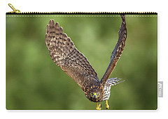 Carry-all Pouch featuring the photograph Red-tailed Hawk by Peter Lakomy