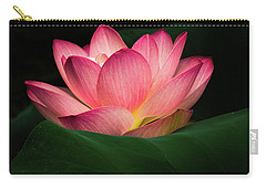Water Lily Carry-all Pouch by Jay Stockhaus
