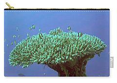Zanzibar Island Sea  Coral Reef Vegitation Bio Diversity Of Exotic Fish Plants And  Organisims Zanzi Carry-all Pouch by Navin Joshi