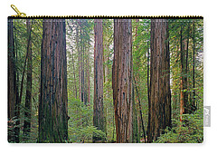 Carry-all Pouch featuring the photograph 2b6391 Armstrong Redwoods Ca by Ed Cooper Photography
