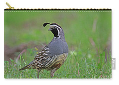 California Quail Carry-all Pouch