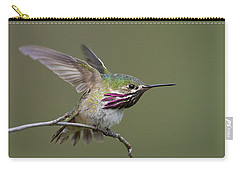 Calliope Hummingbird Carry-all Pouch by Doug Herr