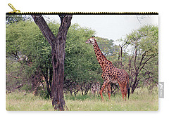 Giraffes Eating Acacia Trees Carry-all Pouch