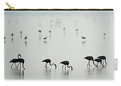 Greater Flamingos Phoenicopterus Roseus Carry-all Pouch