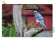 Carry-all Pouch featuring the photograph I See You by Carol Bradley